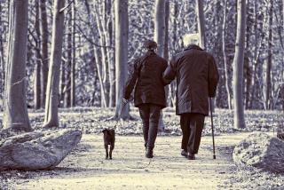 Elderly-couple-3304384_1920